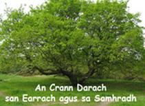 an-crann-darach-sahmradh